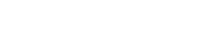 Local Unit Financial Auditing System